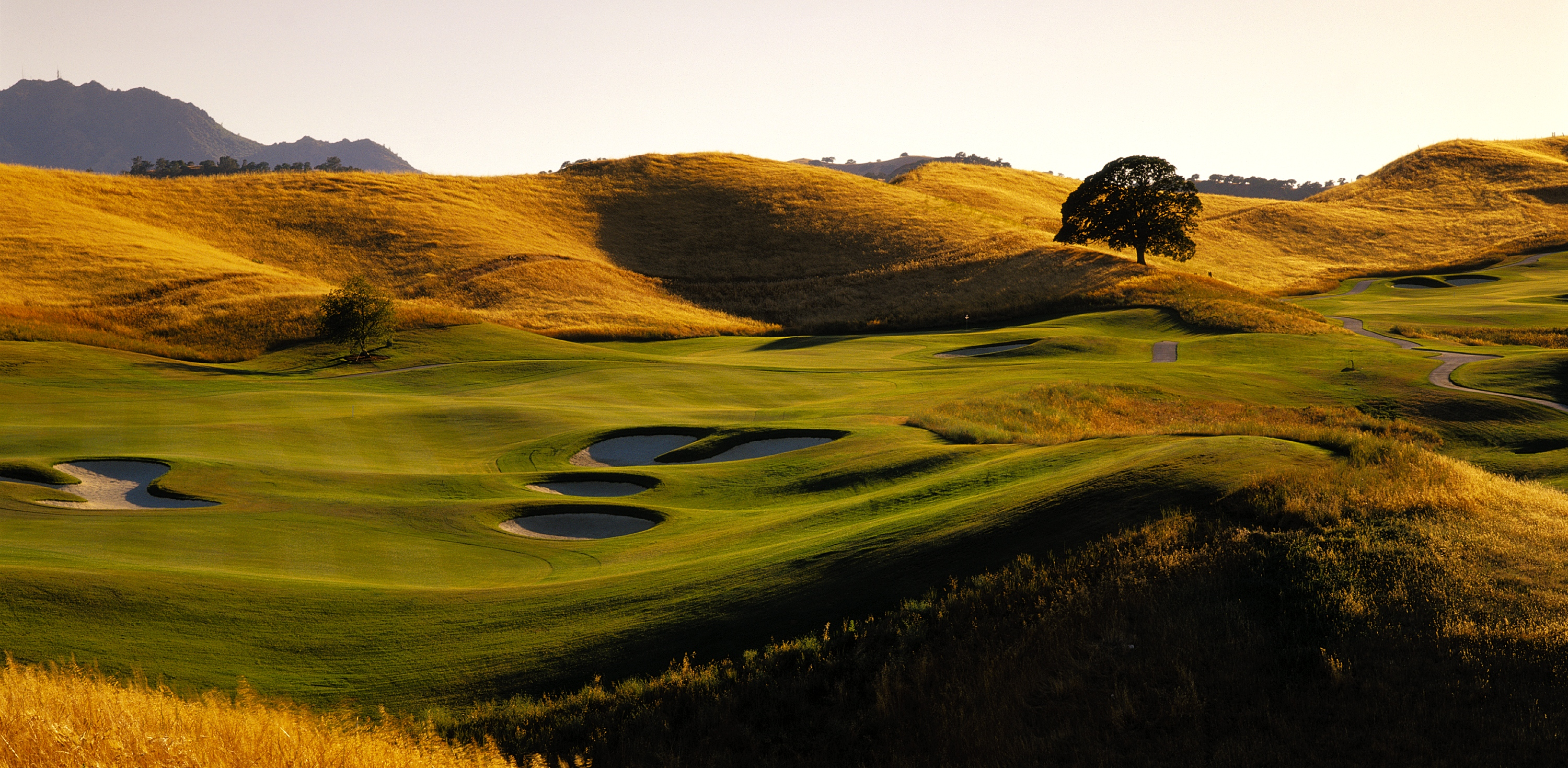 Golf Course Remodeling